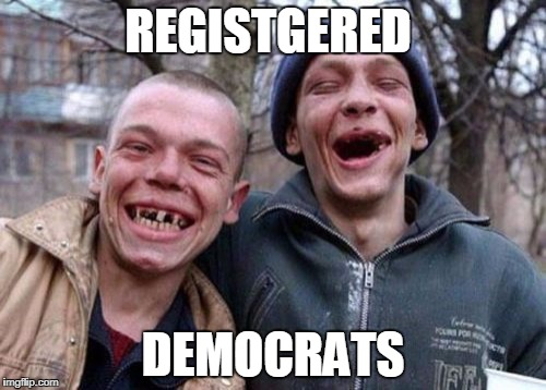 Ugly Twins Meme | REGISTGERED DEMOCRATS | image tagged in memes,ugly twins | made w/ Imgflip meme maker