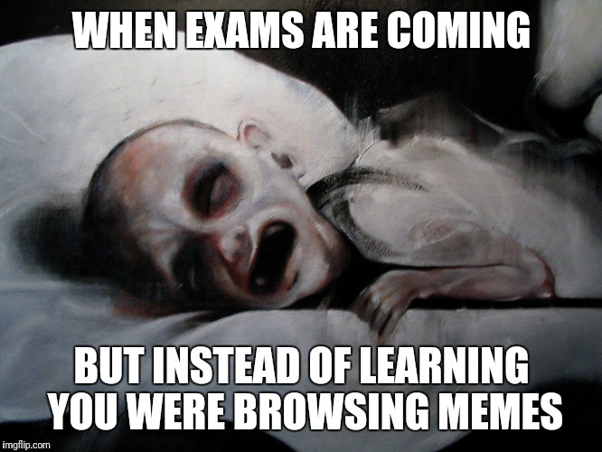 WHEN EXAMS ARE COMING BUT INSTEAD OF LEARNING YOU WERE BROWSING MEMES | image tagged in dying from final exams | made w/ Imgflip meme maker