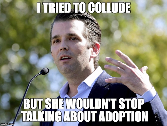 Leavenworth Bound | I TRIED TO COLLUDE BUT SHE WOULDN'T STOP TALKING ABOUT ADOPTION | image tagged in donald trump jr,trump jr,treason,trump russia collusion | made w/ Imgflip meme maker