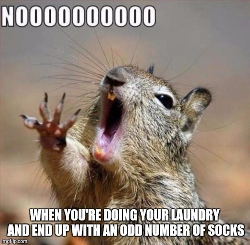noooooooooooooooooooooooo | WHEN YOU'RE DOING YOUR LAUNDRY AND END UP WITH AN ODD NUMBER OF SOCKS | image tagged in noooooooooooooooooooooooo | made w/ Imgflip meme maker