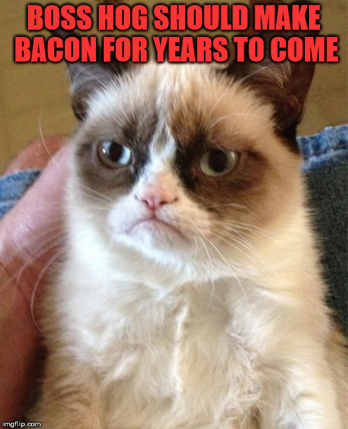 Grumpy Cat Meme | BOSS HOG SHOULD MAKE BACON FOR YEARS TO COME | image tagged in memes,grumpy cat | made w/ Imgflip meme maker
