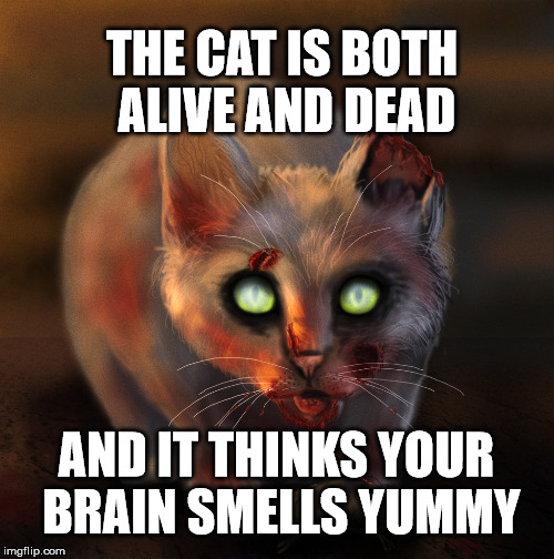 THE CAT IS BOTH ALIVE AND DEAD AND IT THINKS YOUR BRAIN SMELLS YUMMY | made w/ Imgflip meme maker
