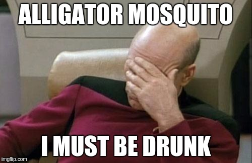 Captain Picard Facepalm Meme | ALLIGATOR MOSQUITO I MUST BE DRUNK | image tagged in memes,captain picard facepalm | made w/ Imgflip meme maker