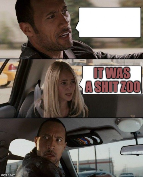 The Rock Driving Meme | IT WAS A SHIT ZOO | image tagged in memes,the rock driving | made w/ Imgflip meme maker