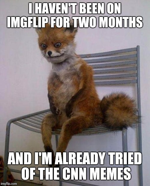 Fox Tired of CNN Memes  | I HAVEN'T BEEN ON IMGFLIP FOR TWO MONTHS AND I'M ALREADY TRIED OF THE CNN MEMES | image tagged in tired fox,funny,funny memes,meme,cnn,memes | made w/ Imgflip meme maker
