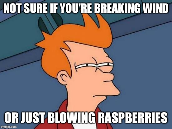 Futurama Fry Meme | NOT SURE IF YOU'RE BREAKING WIND OR JUST BLOWING RASPBERRIES | image tagged in memes,futurama fry | made w/ Imgflip meme maker