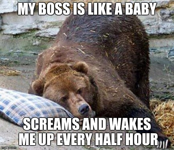 Boss Baby | MY BOSS IS LIKE A BABY SCREAMS AND WAKES ME UP EVERY HALF HOUR | image tagged in sleep,memes,funny,boss,baby | made w/ Imgflip meme maker