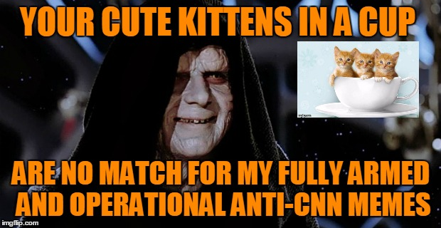 YOUR CUTE KITTENS IN A CUP ARE NO MATCH FOR MY FULLY ARMED AND OPERATIONAL ANTI-CNN MEMES | made w/ Imgflip meme maker