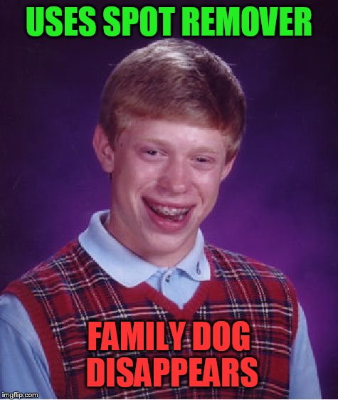 Bad Luck Brian Meme | USES SPOT REMOVER FAMILY DOG DISAPPEARS | image tagged in memes,bad luck brian | made w/ Imgflip meme maker