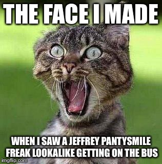 Shocked Cat | THE FACE I MADE WHEN I SAW A JEFFREY PANTYSMILE FREAK LOOKALIKE GETTING ON THE BUS | image tagged in shocked cat | made w/ Imgflip meme maker