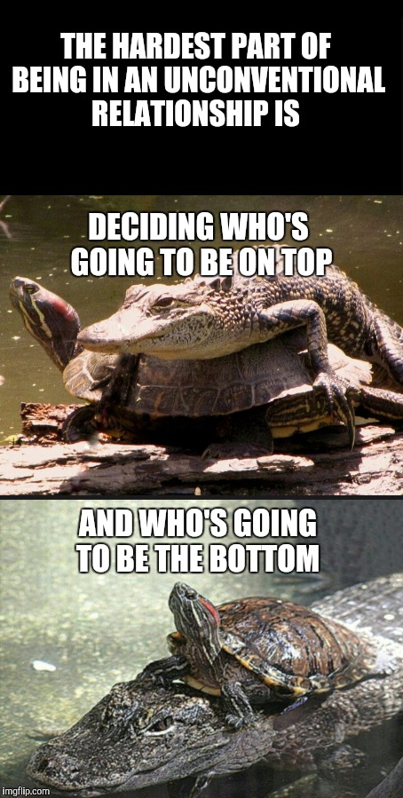 Relationships these days aren't easy, or so I've been told | THE HARDEST PART OF BEING IN AN UNCONVENTIONAL RELATIONSHIP IS DECIDING WHO'S GOING TO BE ON TOP AND WHO'S GOING TO BE THE BOTTOM | image tagged in jbmemegeek,alternative relationships,memes | made w/ Imgflip meme maker
