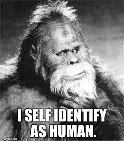 Bigfoot | I SELF IDENTIFY AS HUMAN. | image tagged in bigfoot | made w/ Imgflip meme maker