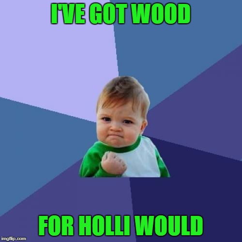 Success Kid Meme | I'VE GOT WOOD FOR HOLLI WOULD | image tagged in memes,success kid | made w/ Imgflip meme maker
