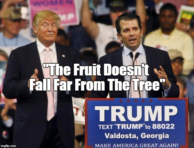 """The Fruit Doesn't Fall Far From The Tree"" 