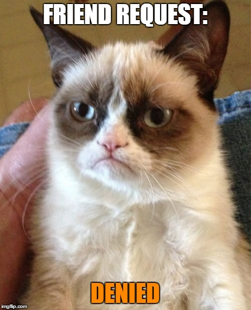 Grumpy Cat Meme | FRIEND REQUEST: DENIED | image tagged in memes,grumpy cat | made w/ Imgflip meme maker