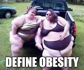 DEFINE OBESITY | image tagged in two fat women | made w/ Imgflip meme maker