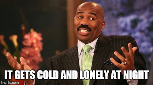 Steve Harvey Meme | IT GETS COLD AND LONELY AT NIGHT | image tagged in memes,steve harvey | made w/ Imgflip meme maker