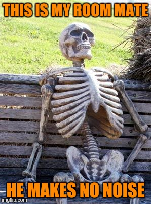 Waiting Skeleton Meme | THIS IS MY ROOM MATE HE MAKES NO NOISE | image tagged in memes,waiting skeleton | made w/ Imgflip meme maker