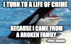 orca | I TURN TO A LIFE OF CRIME BECAUSE I CAME FROM A BROKEN FAMILY. - TUPAC SHAKUR | image tagged in orca | made w/ Imgflip meme maker