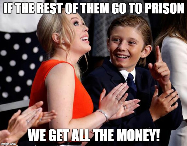 Barron Is a Leaker | IF THE REST OF THEM GO TO PRISON WE GET ALL THE MONEY! | image tagged in barron trump,tiffany trump,donald trump is an idiot,trump russia collusion | made w/ Imgflip meme maker