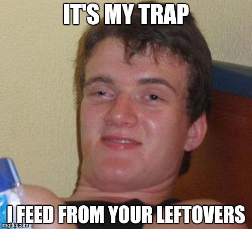 10 Guy Meme | IT'S MY TRAP I FEED FROM YOUR LEFTOVERS | image tagged in memes,10 guy | made w/ Imgflip meme maker