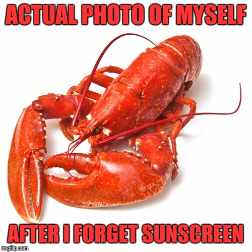 ACTUAL PHOTO OF MYSELF AFTER I FORGET SUNSCREEN | image tagged in lobster | made w/ Imgflip meme maker