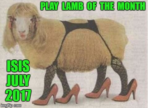 PLAY  LAMB  OF  THE  MONTH ISIS  JULY  2017 | image tagged in sexy sheep | made w/ Imgflip meme maker