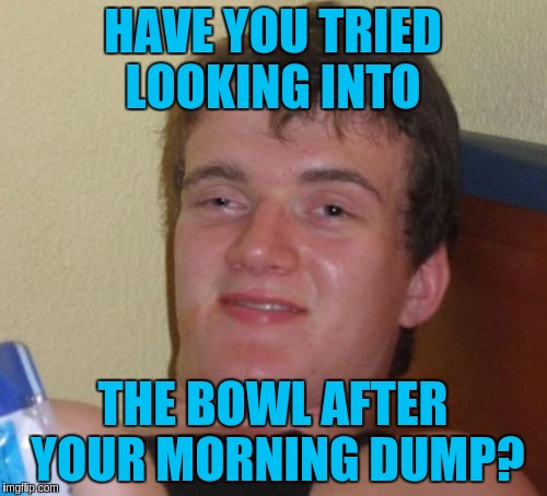 10 Guy Meme | HAVE YOU TRIED LOOKING INTO THE BOWL AFTER YOUR MORNING DUMP? | image tagged in memes,10 guy | made w/ Imgflip meme maker
