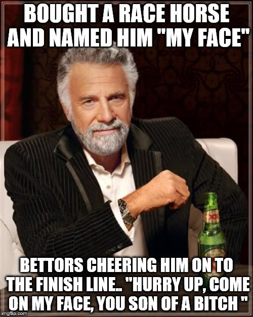 "The Most Interesting Man In The World Meme | BOUGHT A RACE HORSE AND NAMED HIM ""MY FACE"" BETTORS CHEERING HIM ON TO THE FINISH LINE.. ""HURRY UP, COME ON MY FACE, YOU SON OF A B**CH "" 