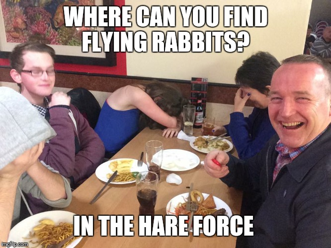 Dad Joke Meme | WHERE CAN YOU FIND FLYING RABBITS? IN THE HARE FORCE | image tagged in dad joke meme | made w/ Imgflip meme maker