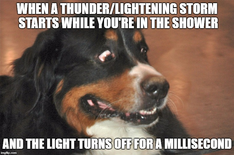 Then you contemplate whether it's worth getting out... | WHEN A THUNDER/LIGHTENING STORM STARTS WHILE YOU'RE IN THE SHOWER AND THE LIGHT TURNS OFF FOR A MILLISECOND | image tagged in scared dog,you're gonna have a bad time,monsters,help,memes | made w/ Imgflip meme maker