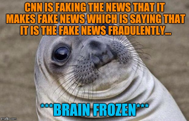 Awkward Moment Sealion Meme | CNN IS FAKING THE NEWS THAT IT MAKES FAKE NEWS WHICH IS SAYING THAT IT IS THE FAKE NEWS FRADULENTLY... ***BRAIN FROZEN*** | image tagged in memes,awkward moment sealion | made w/ Imgflip meme maker
