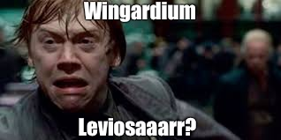 Wingardium Leviosa? | Wingardium Leviosaaarr? | image tagged in harry potter meme,ron weasley,harry potter,scary harry,hermione granger,hermione | made w/ Imgflip meme maker