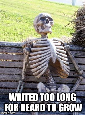 Waiting Skeleton Meme | WAITED TOO LONG FOR BEARD TO GROW | image tagged in memes,waiting skeleton | made w/ Imgflip meme maker