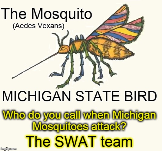 The Michigan State Bird: The Mosquito | The Mosquito (Aedes Vexans) MICHIGAN STATE BIRD Who do you call when Michigan Mosquitoes attack? The SWAT team | image tagged in vince vance,mosquitoes,aedes vexans,swat,michigan,mosquito attack | made w/ Imgflip meme maker