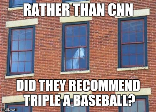 Memes     horse  | RATHER THAN CNN DID THEY RECOMMEND TRIPLE A BASEBALL? | image tagged in memes     horse | made w/ Imgflip meme maker