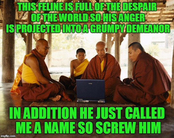 could we not use some fur collars, my acolytes? | THIS FELINE IS FULL OF THE DESPAIR OF THE WORLD SO HIS ANGER IS PROJECTED INTO A GRUMPY DEMEANOR IN ADDITION HE JUST CALLED ME A NAME SO SCR | image tagged in monks memeing,memes,grumpy cat,monks | made w/ Imgflip meme maker