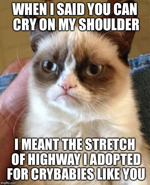 Grumpy Cat Meme | WHEN I SAID YOU CAN CRY ON MY SHOULDER I MEANT THE STRETCH OF HIGHWAY I ADOPTED FOR CRYBABIES LIKE YOU | image tagged in memes,grumpy cat | made w/ Imgflip meme maker