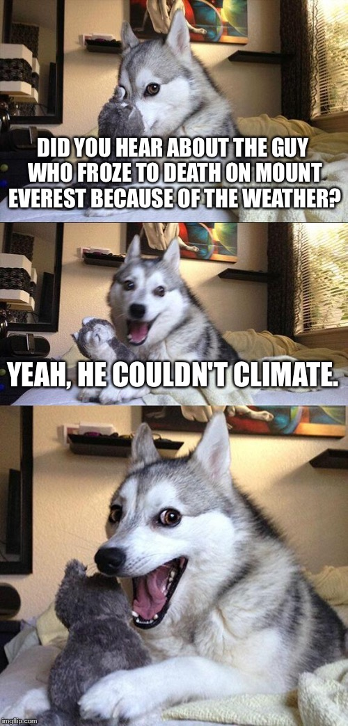 Bad Pun Dog Meme | DID YOU HEAR ABOUT THE GUY WHO FROZE TO DEATH ON MOUNT EVEREST BECAUSE OF THE WEATHER? YEAH, HE COULDN'T CLIMATE. | image tagged in memes,bad pun dog | made w/ Imgflip meme maker