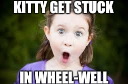 Memes, excited girl | KITTY GET STUCK IN WHEEL-WELL | image tagged in memes,excited girl | made w/ Imgflip meme maker
