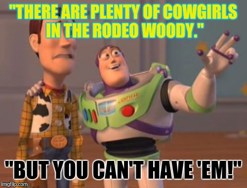 "X, X Everywhere Meme | ""THERE ARE PLENTY OF COWGIRLS IN THE RODEO WOODY."" ""BUT YOU CAN'T HAVE 'EM!"" 