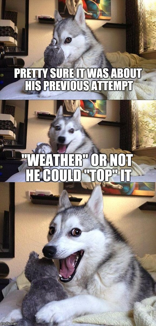 "Bad Pun Dog Meme | PRETTY SURE IT WAS ABOUT HIS PREVIOUS ATTEMPT ""WEATHER"" OR NOT HE COULD ""TOP"" IT 