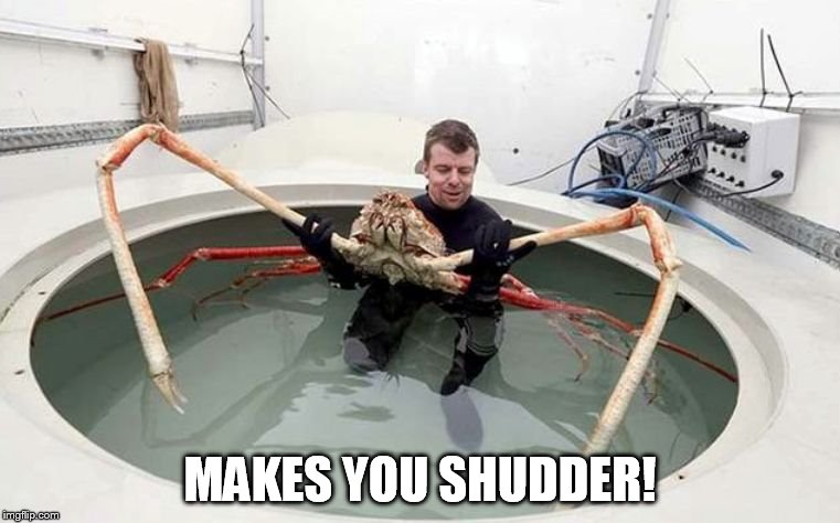 Makes You Shudder! | MAKES YOU SHUDDER! | image tagged in sea spider | made w/ Imgflip meme maker