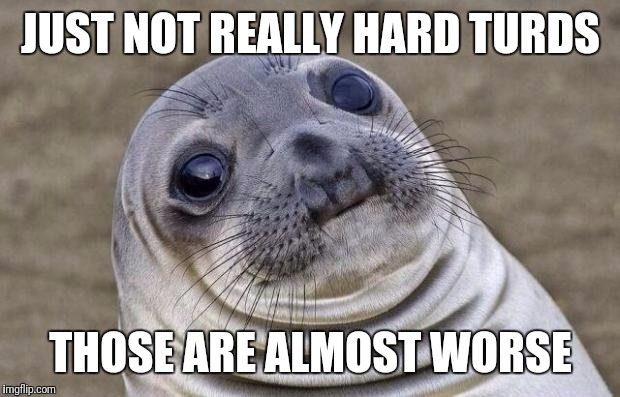 Awkward Moment Sealion Meme | JUST NOT REALLY HARD TURDS THOSE ARE ALMOST WORSE | image tagged in memes,awkward moment sealion | made w/ Imgflip meme maker