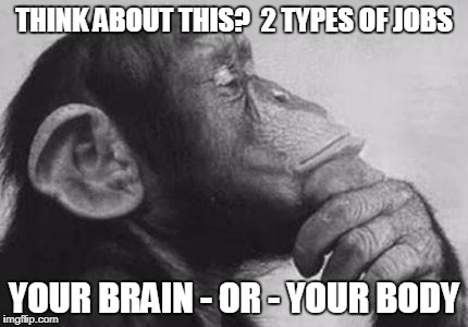 THINK ABOUT THIS?  2 TYPES OF JOBS YOUR BRAIN - OR - YOUR BODY | image tagged in monkey rodin thinker | made w/ Imgflip meme maker