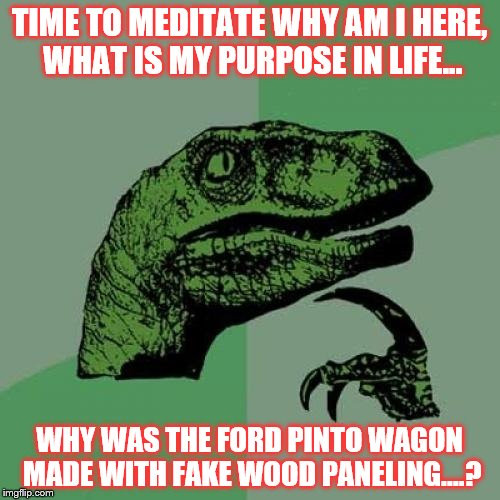 Philosoraptor Meme | TIME TO MEDITATE WHY AM I HERE, WHAT IS MY PURPOSE IN LIFE... WHY WAS THE FORD PINTO WAGON MADE WITH FAKE WOOD PANELING....? | image tagged in memes,philosoraptor | made w/ Imgflip meme maker