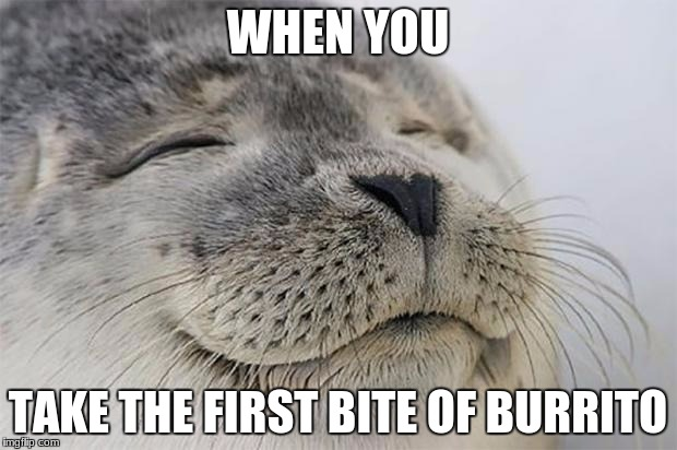 mmmm, burrito | WHEN YOU TAKE THE FIRST BITE OF BURRITO | image tagged in memes,satisfied seal | made w/ Imgflip meme maker
