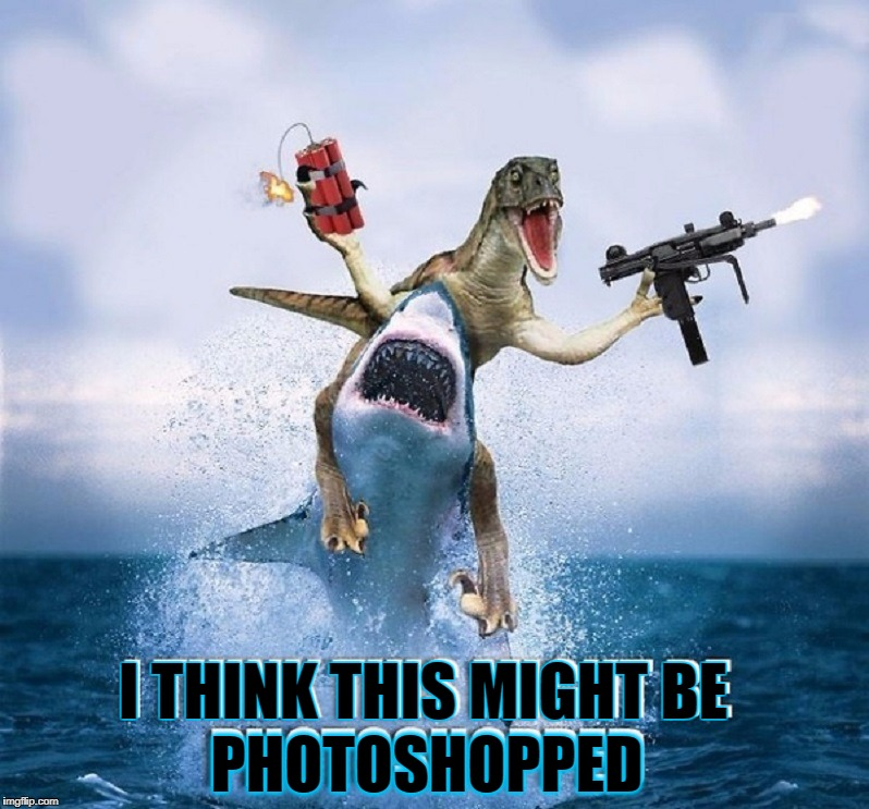 Given Talent & the Greatest Graphics Program EVER, what do You Create? | PHOTOSHOPPED I THINK THIS MIGHT BE | image tagged in vince vance,shark,dinosaur,dynamite,machine gun,photoshop | made w/ Imgflip meme maker