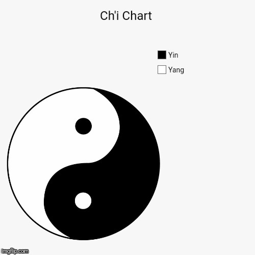 The circle of life | YIN YANG | image tagged in yin,yang,ch'i | made w/ Imgflip meme maker