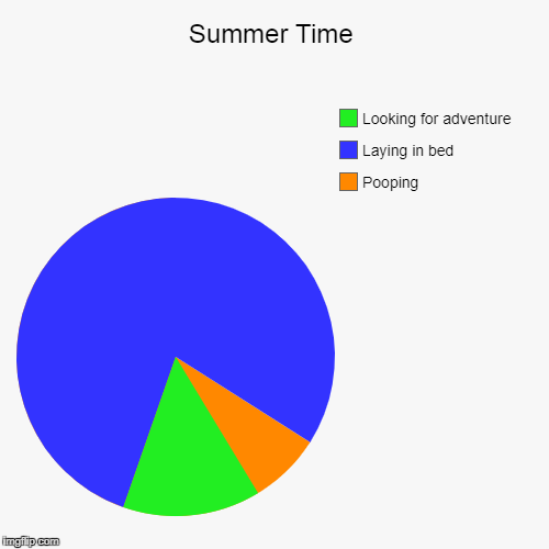 Summer Time | Pooping, Laying in bed, Looking for adventure | image tagged in funny,pie charts | made w/ Imgflip pie chart maker